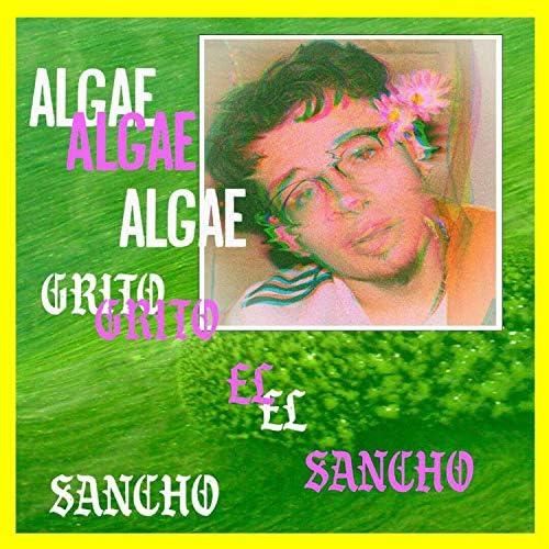 Grito el Sancho