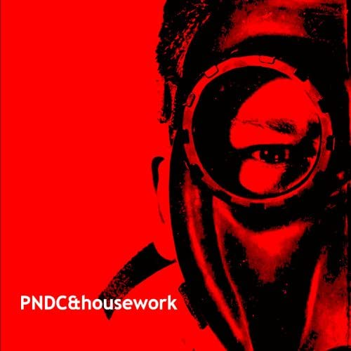 Pndc & Housework