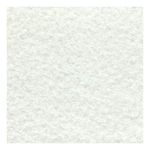Decoweb Moquette Stand (Blanc, 2m x 10m)