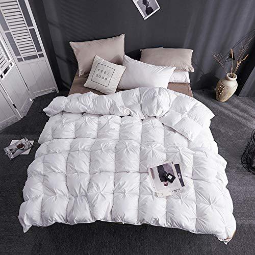 CHOU DAN Duvet 95 weiße Gänsedaunen Fünf-Sterne-Hotel echte Feder Quilt Winter Quilt warme Quilt Kern verdickt Single Double-220 * 240 cm 4000 g_Weiß