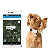 Winnes Mini Traceur GPS étanche, GPS Chien, Traceur GPS Chien Chat Animal Real Time Tracking & Activity Moniteur Tracker tk911