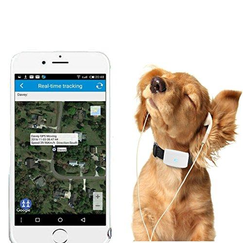 Mini GPS Tkstar, tracker impermeable, GPS para mascotas en tiempo real, seguimiento y monitorización con app online (para Android y iOS) tk911, color tk911