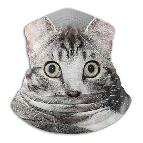 Katzen-Handtuch und schwarze Maske, Schwarz / Weiß