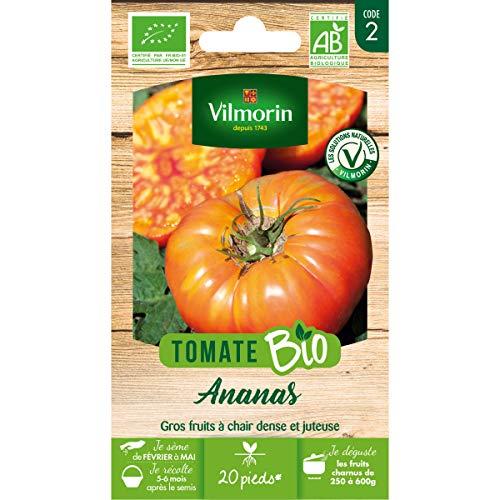 Vilmorin - Sachet de graines Tomate Ananas BIO