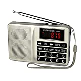 Tivdio TR603 Radios Portable AM FM, Short Wave Band Radio, Digital Radio Support TF, USB, AUX Input, with Preset Button and 5W Speaker (Sliver)
