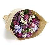 Ramo Fantasy- Sanremo flores secas de la Riviera dei Fiori Italia (Violeta)