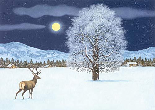 Zauberhafte Winternacht Adventskalender: mit 24 Klapptürchen