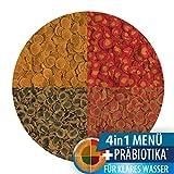 Tetra Pro Menu Premiumfutter Flockenfutter-Mischung - 3
