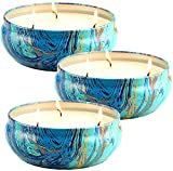 LA JOLIE MUSE Citronella Candles Set 3, Scented Candles Natural Soy...
