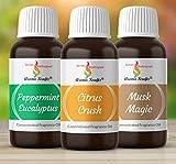 Aromakrafts® Soap Making Fragrance Oil Set of 3 - Peppermint Eucalyptus, Citrus Crush