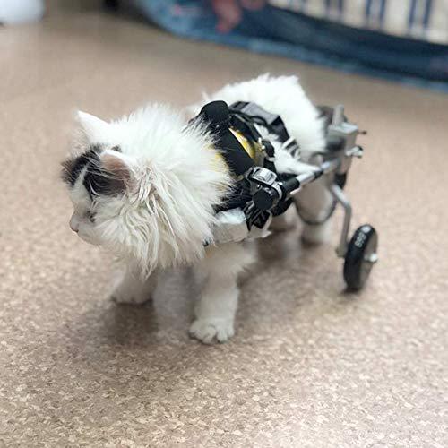 Cora Pet Hunde Wagen Rollstuhl Hunderollstuhl Für Hinterbein/Hintere Füße Hund Katze Kaninchen, Gehhilfe Hundegehilfe Hunderollwagen, Dog Wheelchair Für Haustier Mit Einem Gewicht Von 1-2.5 KG