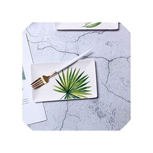 planta wasabi fabricante Nova's choice-trays