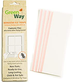 GreenWay Window Fly Trap - 12 Boxes - 48 Fly Glue Traps | Heavy Duty Glue, Safe, Non-Toxic with No Insecticides or Odor, Eco Friendly, Kid and Pet Safe …