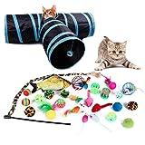 DingGreat Juego de juguetes para gatos con túnel de gato, accesorios para gatos, peces de juguete para gatos, bolas, ratón, pesca de gato, pluma de juguete para gatos, juego de juguetes para gatos
