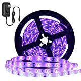 Super Bright 24 Watts UV Black Light LED Strip, 16.4FT/5M 3528 300LEDs 395nm-405nm Waterproof IP65 Blacklight Night Fishing implicitly Party with 12V 2A Power Supply