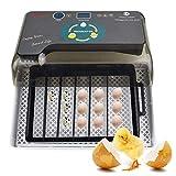 ZIHAOI Digital Mini Egg Hatching 12 Egg Incubatrice Hatching Automatic Hatcher Temperatura Controllata per Polli, Anatre, Uccelli
