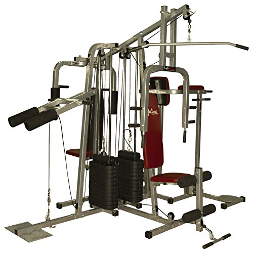 Lifeline MYSPOGA_05072018_mfn Other 6 Station Home Gym - 2 Weight Lines, Others (Multicolor)