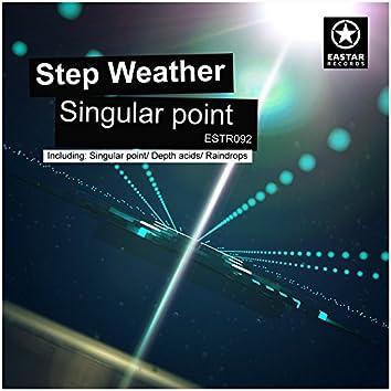 Singular Point