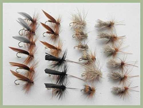 Sedge Dry Trota Mosche, 24Pezzi Elk, Cervo, Marrone, g & H & More, Formato Misto