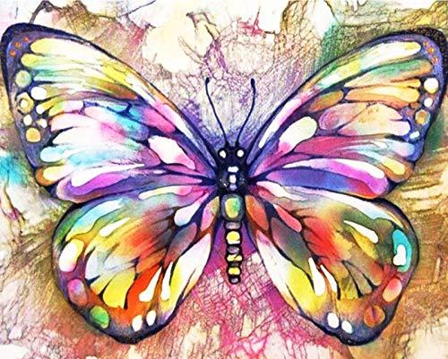 WJGJ Malowanie według numerów zestawy dla dorosłych, DIY zestaw do malowania olejnego na płótnie dla dzieci lub początkujących ze szczotkami akrylowymi pigment rysunek farba 40 x 50 cm (wspaniały motyl)