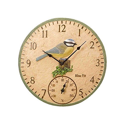 Blue Tit Wall Clock and Thermometer
