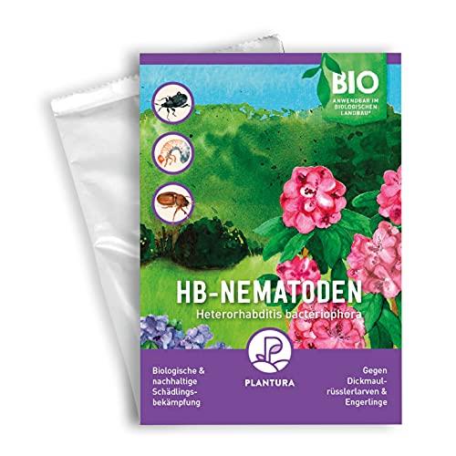Plantura HB-Nematoden gegen Dickmaulrüssler & Engerlinge, wirksam & nachhaltig, 25 Mio