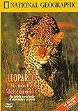 Leopardo, la noche del cazador (Video) (VARIOS)