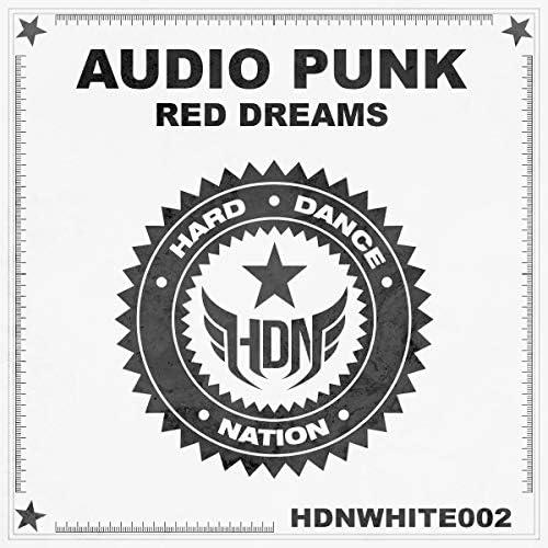 Audio Punk