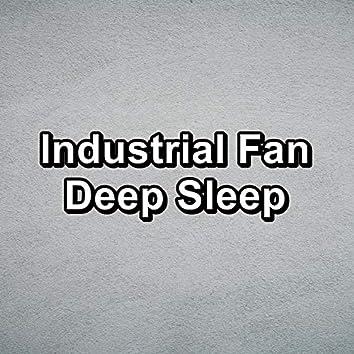 Industrial Fan Deep Sleep
