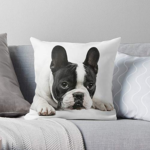 Character Pet Dog and Black Portrait Bulldog White French Frenchie -Animal - Decorative Pillow Cases Home Decor Customize Polyester Pillowcase Double Side Printed Customize