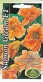 Portal Cool Graines de fleurs capucine Salmon Gleam F1 Literie Jardin Pictorial Packet Clim Royaume-Uni