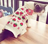 Cat Clothes Pet Sweater Knitwear for Dogs & Cats,Strawberry X-Small (XS) Back Length 8' Fits 2-4lbs
