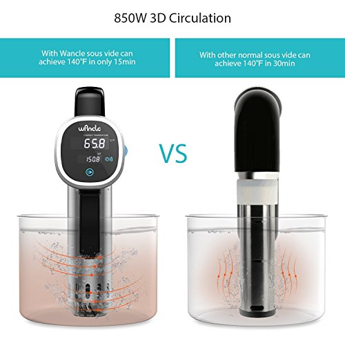 Wancle Sous Vide Cooker, Thermal Immersion Circulator, Accurate Temperature Digital Timer, Ultra-Quiet, 850 Watts, 120V, Stainless Steel/Black