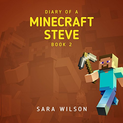 Couverture de Diary of a Minecraft Steve 2. The Amazing Minecraft World Told by a Hero Minecraft Steve