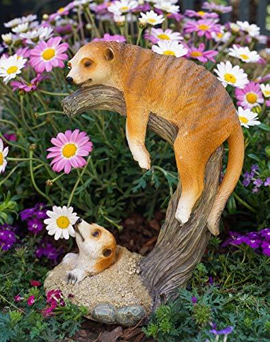 Kremers Schatzkiste Erdmännchen Mama mit Kind auf AST Figur Gartenfigur 24 cm Meercat Tierfigur