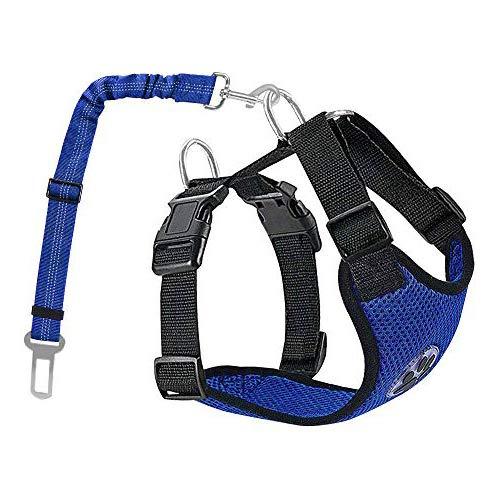 Lukovee Double Hundegeschirr mit Sicherheitsgurtfür alle alltäglichen und sportlichen Aktivitäten dem Vierbeiner luftdurchlässiges Reguläre Reisenweste Autosicherheitsgurt (S, Hellblau)