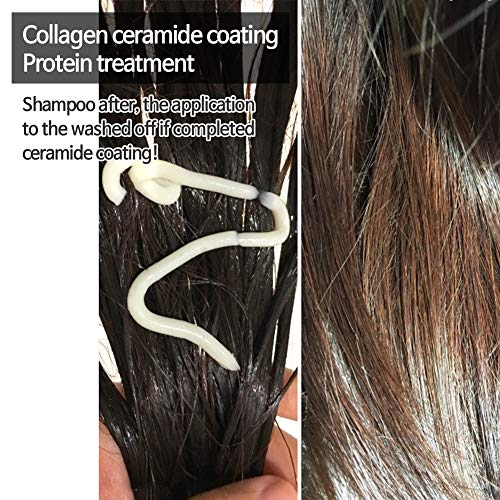 Elizavecca CER-100 Collagen Coating Hair Protein Treatment 100ml / hair treatment before and after / hair pack before and after / hair mask