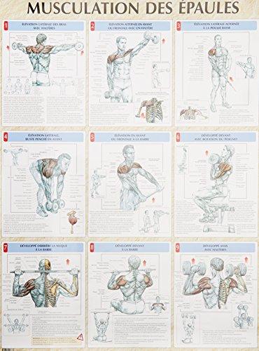 Musculation des épaules : Poster