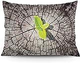 Keyboard cover Funda de cojín con diseño de tierra seca con el último arbusto salvavidas planeta simbólica Hope Nature Home, funda de cojín impresa, 40,6 x 50,6 cm