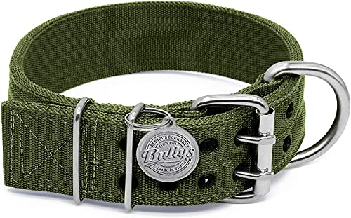 Pitbull Collar by Bully's