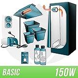 Kit Indoor Terra 150w + Grow Box - BASIC