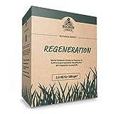 Regenerations-Rasen Bloom & Green I RSM 3.2 Rasensamen für Rasen-Regeneration I Gras-Samen für Erneuerung & Rasenpflege I Rasensaat für die Rasenreparatur I Schnellwachsende Rasen Nachsaat I 2,5 kg