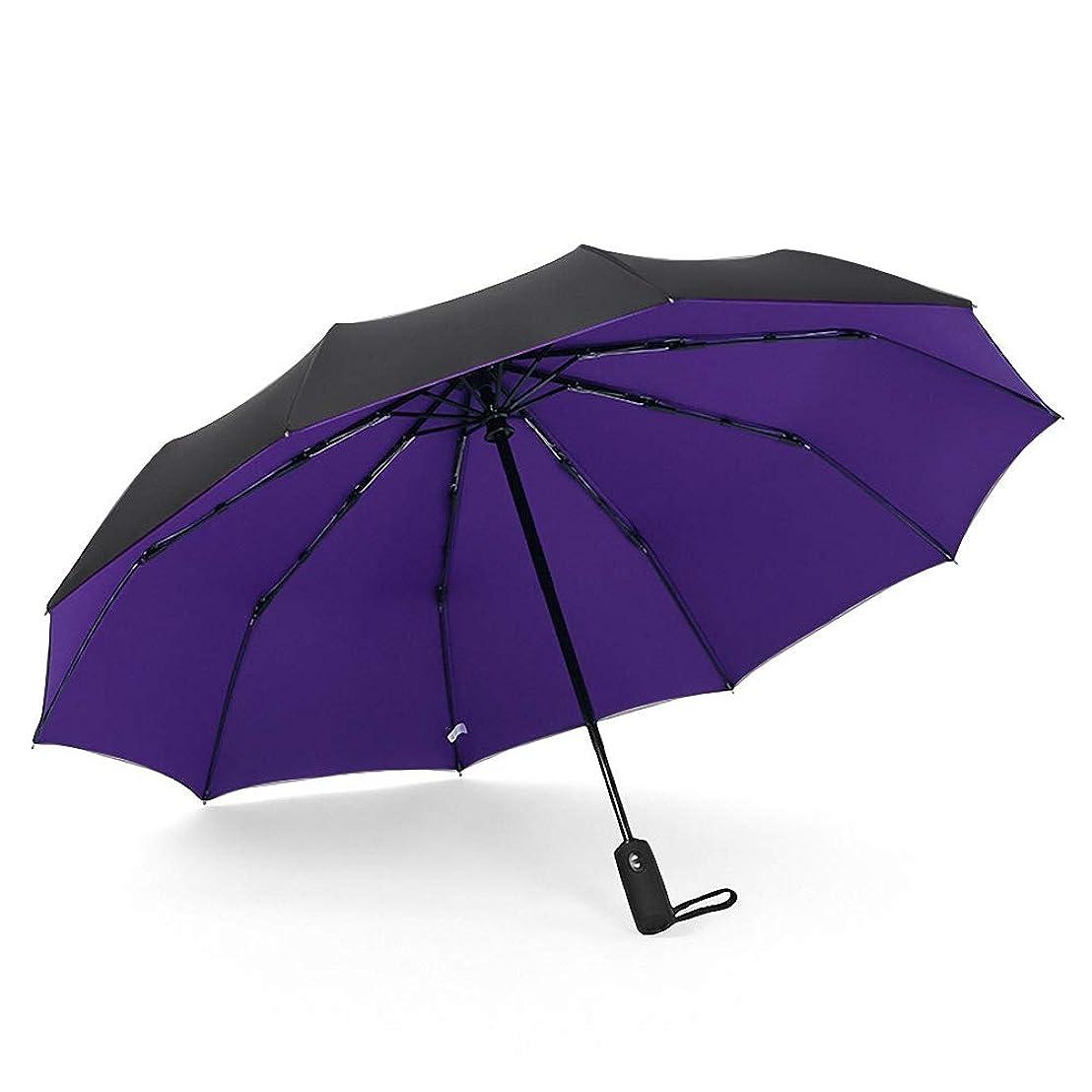 調停する酸度ところでD&L 折りたたみ傘 自動開閉 頑丈な10本骨 大きい メンズ傘 Teflon加工 超撥水 210T高強度グラスファイバ ー 耐強風 二重の傘面 晴雨兼用 (パープル)