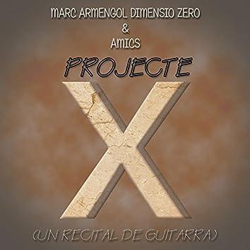 Projecte X