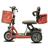ZJDU Scooter De Movilidad De 3 Ruedas,Scooter Eléctrico Plegable De Movilidad,Scooter De Movilidad De Ocio Al Aire Libre para Ancianos/Discapacitados,Scooter Eléctrico Portátil,Red