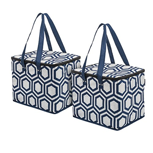 Planet E Reusable Grocery Shopping Bags Large Collapsible Insulated zippered Coolers with Reinforced Bottom Made of Recycled Plastic (Pack of 2)