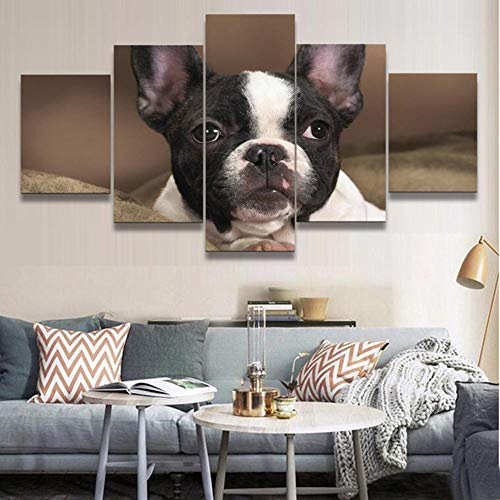LWJPD Cuadro en Lienzo 5 Partes Impresión HD Moderna Decoración del Hogar Pintura sobre Lienzo Animal Bulldog Cuadro Modular Arte De La Pared Cartel Sala De Estar Sin Marco 60 Inch