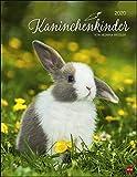 Kaninchenkinder Posterkalender. Wandkalender 2020. Monatskalendarium. Spiralbindung. Format 34 x 44 cm - Heye