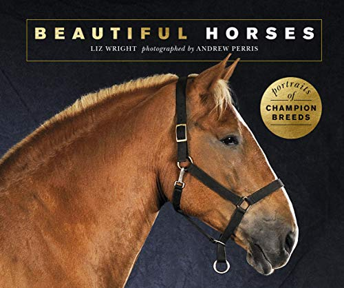 Beautiful Horses:Portraits of champion breeds (Beautiful Animals) (English Edition)