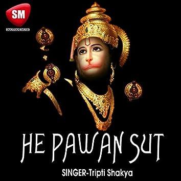 Hey Pawan Sut (Hindi Hanuman Bhajan)